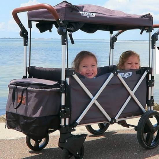 Kneez wagon double stroller rental