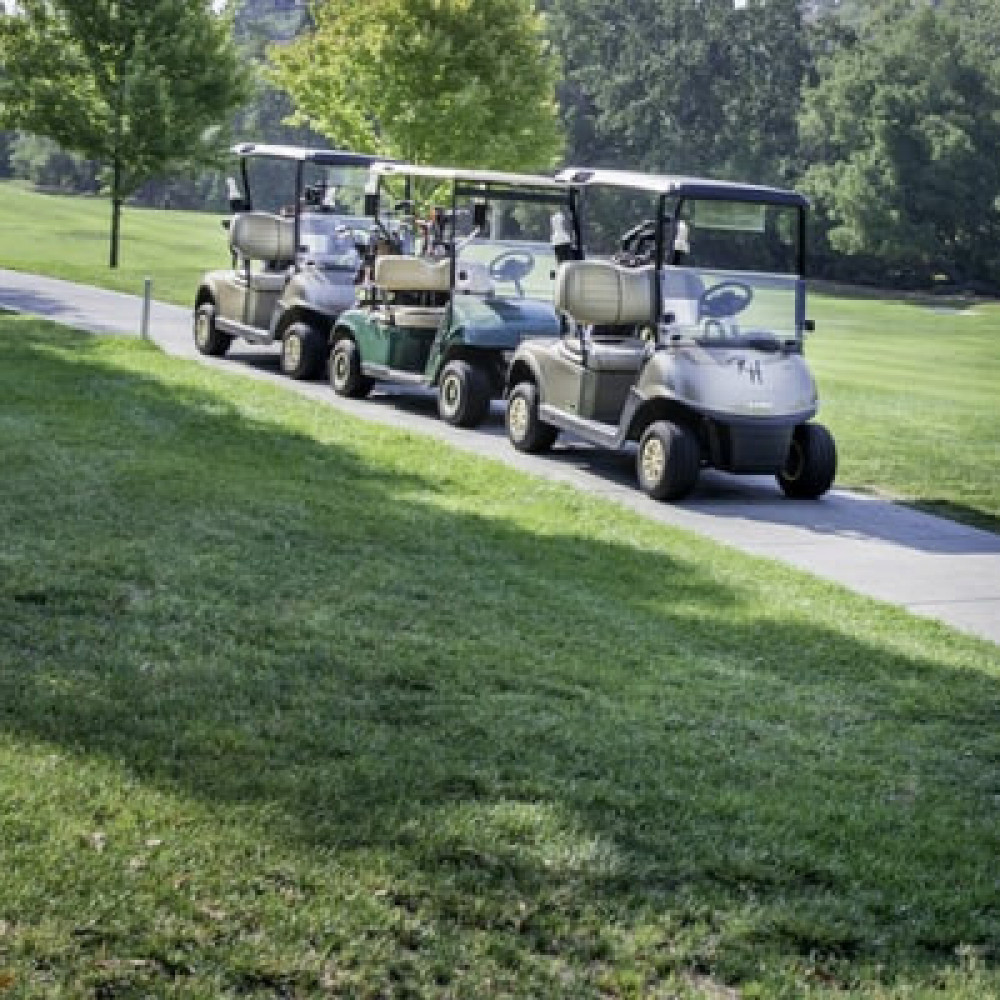 Golf Cart rentals in San Jose - Cloud of Goods