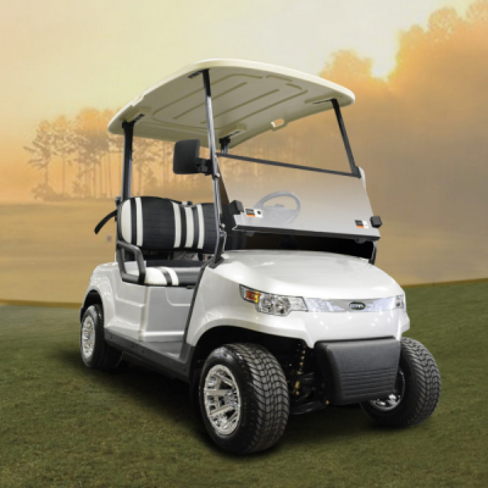 2 Seater golf cart - gas powered rentals in Orlando - Cloud of Goods