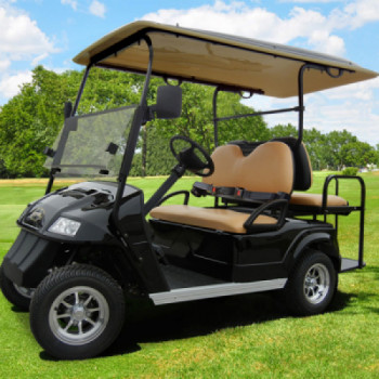 4 Seater golf cart - electric rental Boston