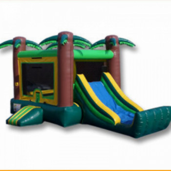 Safari bounce house rental Houston