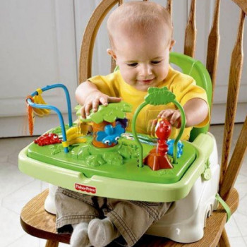 Booster Feeding Seat rentals in Pigeon Forge - Cloud of Goods