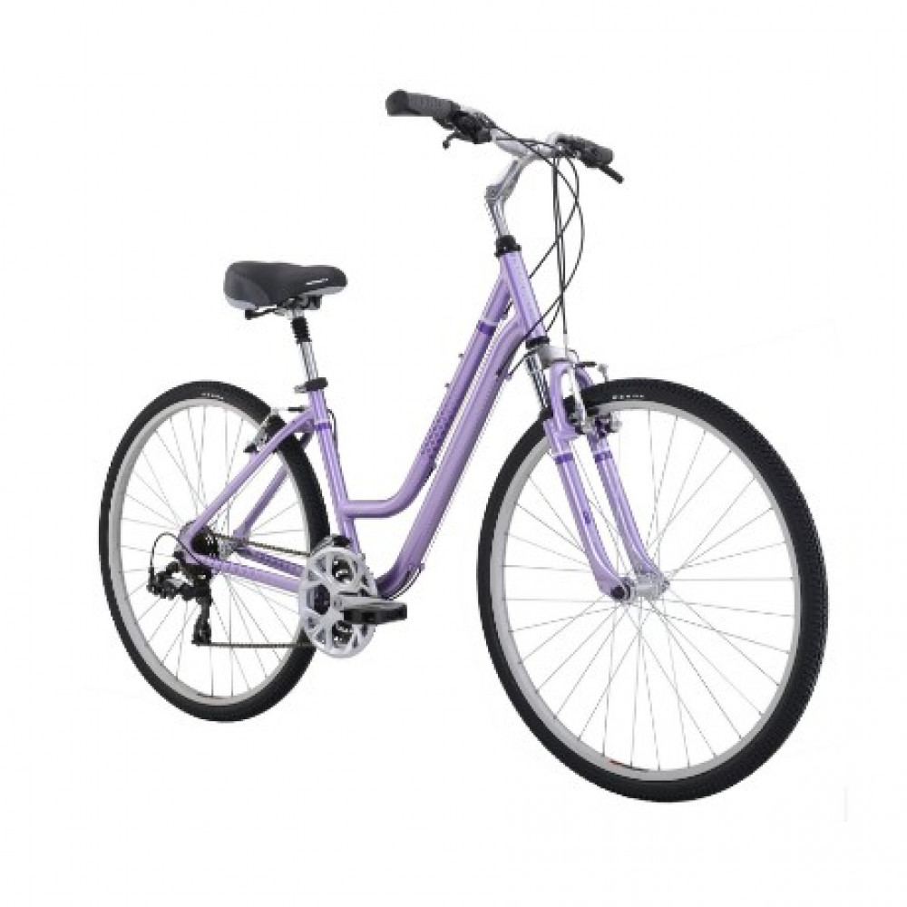 Women's hybrid bike rentals in Pigeon Forge - Cloud of Goods